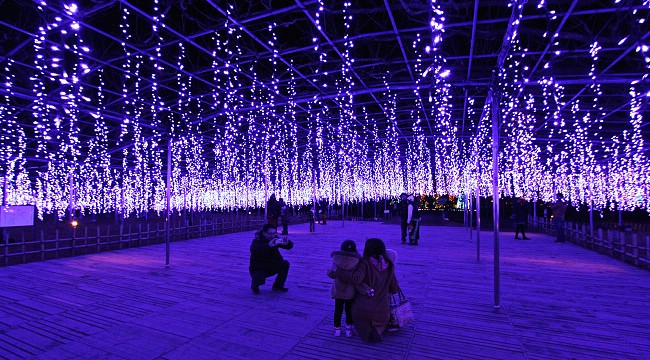 Ashikaga Flower Park winter illumination