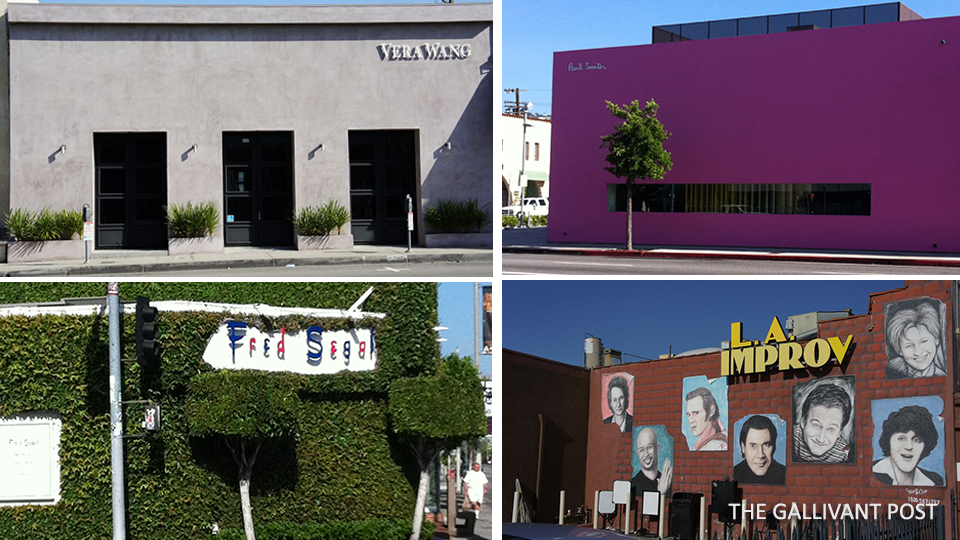 Shops you can find along Melrose Avenue.