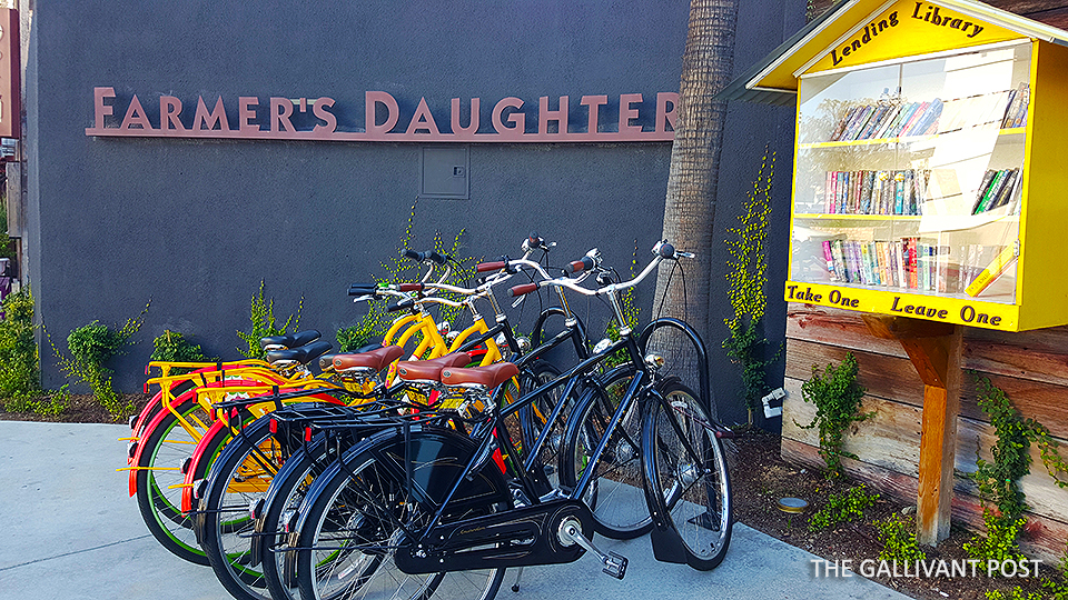 Farmer's-Daughter_bicycle-and-books-on-loan